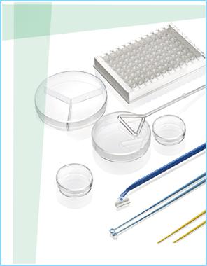 细菌培养系列