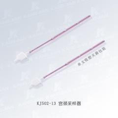 康健 KJ502-13 宫颈刷/宫颈采样器 定制生产 单支灭菌 100支/包